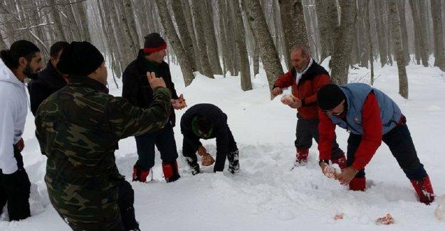 Bursalı dağcılar yaban hayvanlarını unutmadı