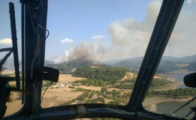 Çanakkale'de Orman Yangını Meydana Geldi