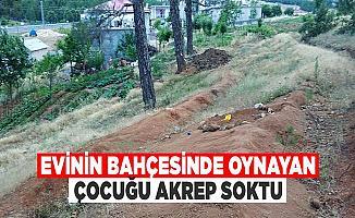 Bursa'da 8 Yaşındaki Çocuğu Akrep Soktu