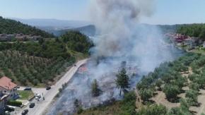 Bursa Çağrışan'daki Orman Yangını