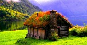 Doğadan Manzaralar