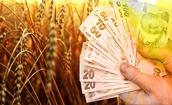 Hükümet, Gürer'in sesine kulak verdi; Çiftçi borçları ertelendi