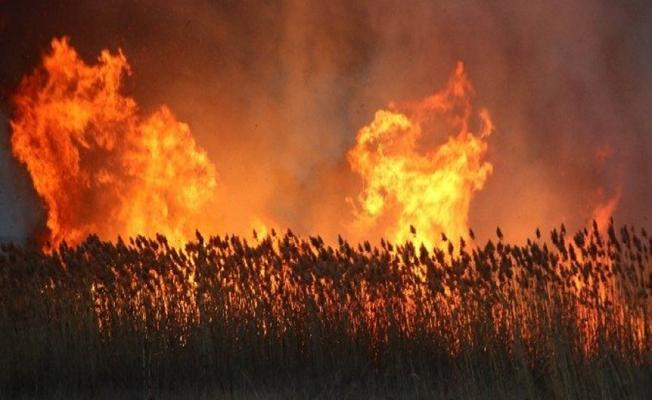 Bursa İznik'teki Yangın Yürekleri Ağıza Getirdi