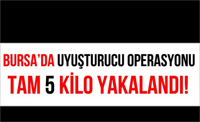 Bursa İnegöl'de 5 Kilo Esrar Ele Geçirildi