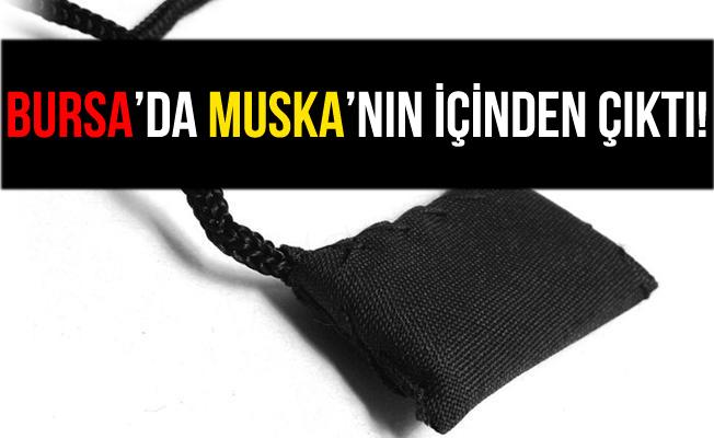 Bursa'da Muskanın İçinden Uyuşturucu Çıktı