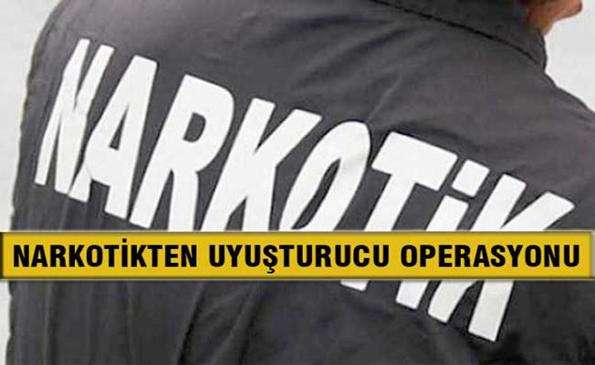 Bursa'da Kızlarına Bonzai Sattıran Şahıs Tutuklandı