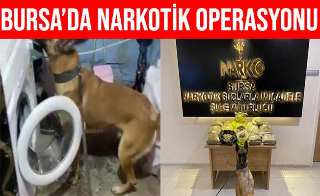 Bursa'da Narkotik Köpeği Fırtına 14 Kilo Uyuşturucuyu Buldu