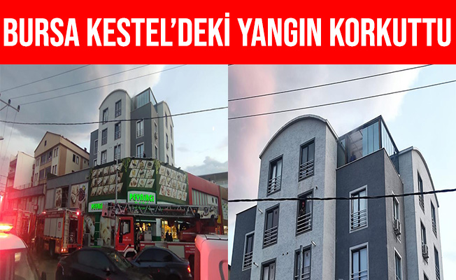Bursa Kestel'deki Yangın Korkuttu
