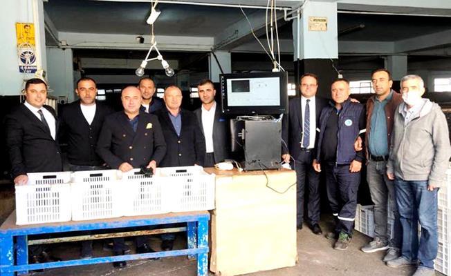 Bursa Marmarabirlik'te Zeytin Alımı Başladı