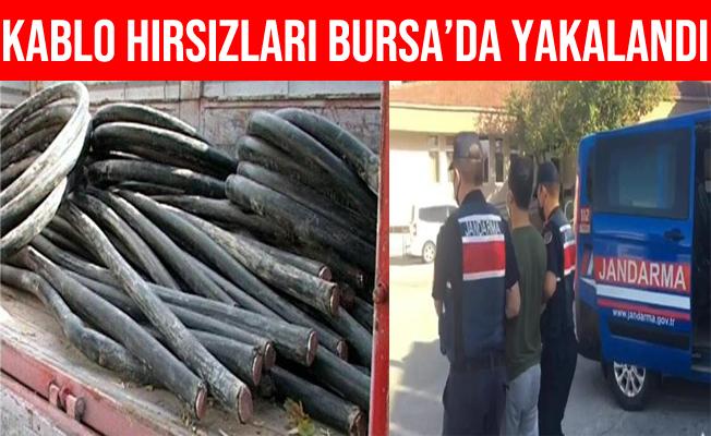 Bursa'daki Kablo Hırsızları Suçüstü Yakalandılar