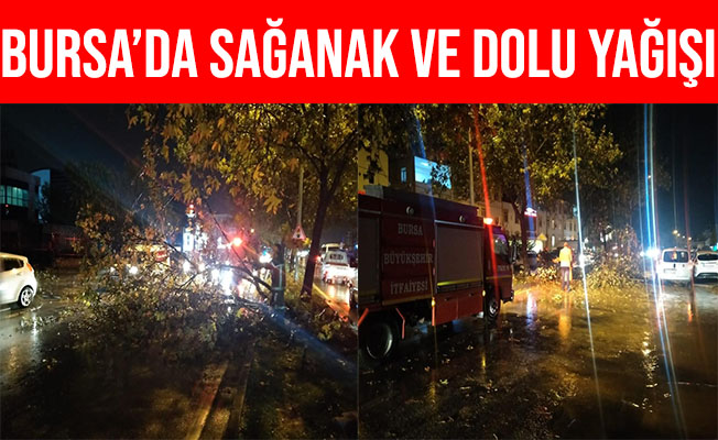 Bursa'daki Sağanak ve Dolu Yağışı Hayatı Olumsuz Etkiledi
