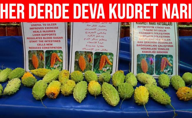 Her Derde Deva Kudret Narı Bursa'da Tezgahlarda Yerini Aldı