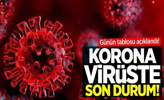 Türkiye'de Son 24 Saatte Korona Virüsten 228 Kişi Öldü