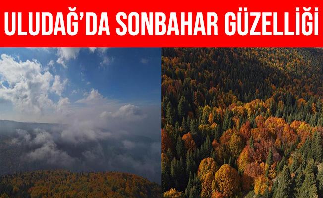 Uludağ'ın Sonbahar Güzelliği Göz Kamaştırdı