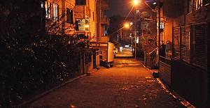 Organik ışık yayan bitkiler sokakları aydınlatacak