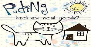 Puding - Kedi Evi Nasıl Yapılır Sosyal Sorumluk Projesi