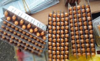 Bolu'da 75 bin liralık kaçak ilaç yakalandı