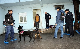 Yalova'da şafak vakti dev uyuşturucu operasyonu