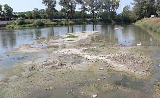 Aşırı Sıcaklar Nehir Sularını da Etkiledi