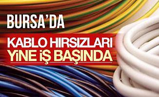 Bursa Büyükorhan'daki Kablo Hırsızları Yakalandı