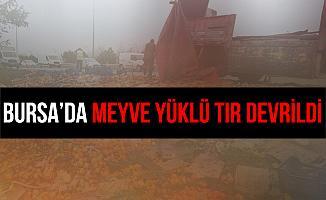 Bursa'da Meyve Yüklü Tır Devrildi: 2 Yaralı