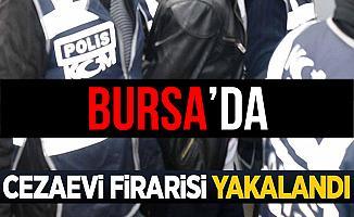 Bursa'da Cezaevi Firarisi Şahıs GBT Sorgulamasında Yakalandı