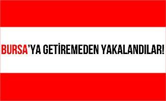 Bursa'da Jandarma Ekipleri Plaka Esrar Ele Geçirdiler!