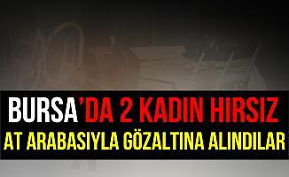 Bursa'da Kadın Hırsızlar At Arabasıyla Gözaltına Alındılar