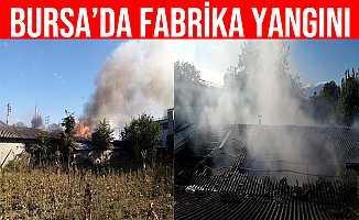 Bursa İnegöl'de Boya İmalathanesinde Patlama ve Yangın