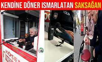 Bursa'da Kendine Döner Ismarlatan Saksağan