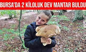Bursa'da Küçük Kız 2 Kiloluk Dev Mantar Buldu