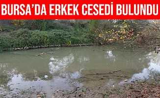 Bursa'da 10 Gündür Kayıp Olan Adamın Cesedi Derede Bulundu