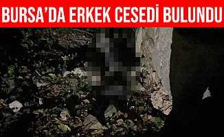 İznik Surlarında Erkek Cesedi Bulundu