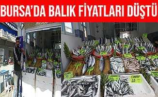 Marmara'da Sıcaklık Düşünce Balık Fiyatları Ucuzladı