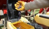 Trakya'da ayçiçeği ekimi başladı