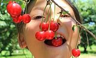 """Antioksidan zengini """"küçük kırmızı ikizler""""in zamanı geldi"""
